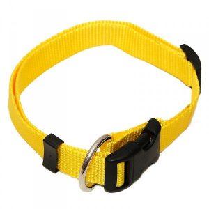 """Hunde Halsbänder """"Standard"""""""